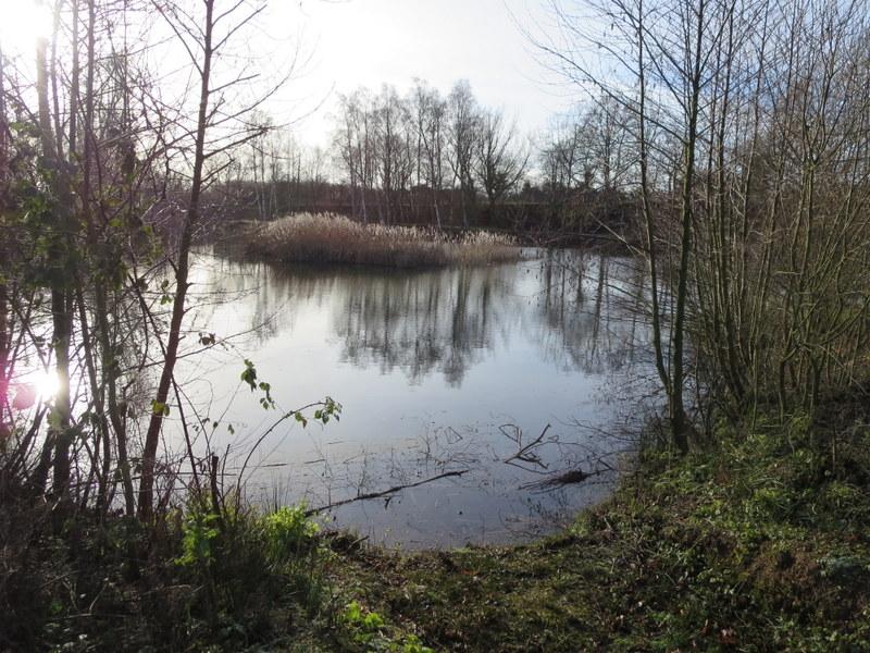 Long lake 2
