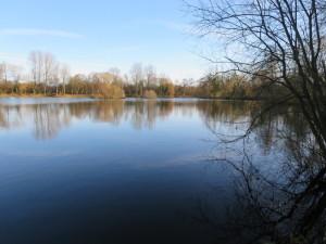 Tom's lake 1