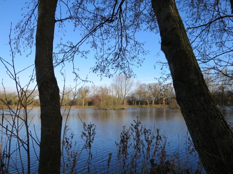 Tom's lake 2