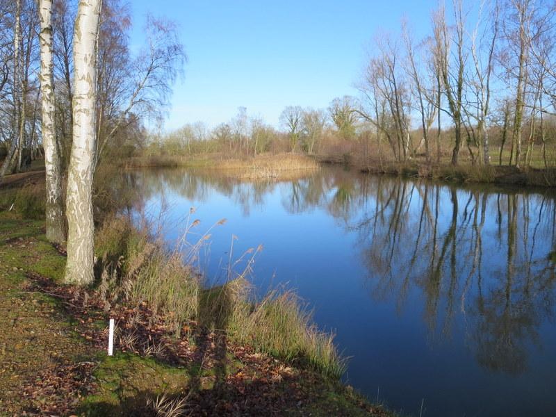 Long Lake 1