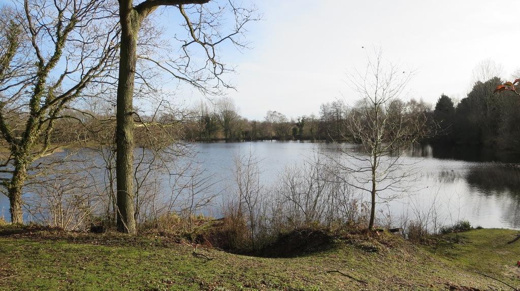 Tom's lake main